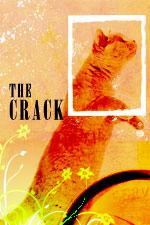 The Crack by Charles Lambert